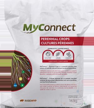 MyConnect Professional Large Format