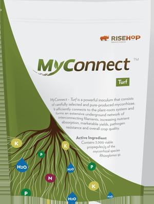 MyConnect Turf Sample Format   RISEHoP