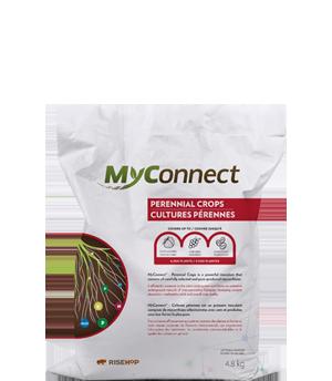 MyConnect Professional Medium Format