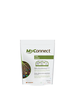 MyConnect Turf Small Format