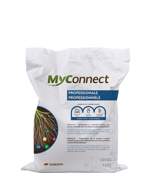 MyConnect Professional Medium Format