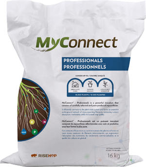 MyConnect Professional Large Format