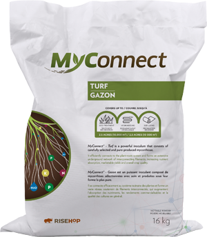 Myconnect Turf Large Format
